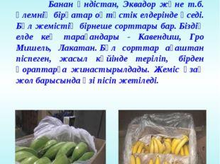 Банан жемісінің тасмалдануы Банан Үндістан, Эквадор және т.б. әлемнің бірқата
