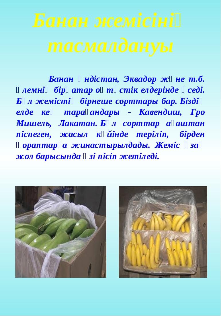 Банан жемісінің тасмалдануы Банан Үндістан, Эквадор және т.б. әлемнің бірқата...