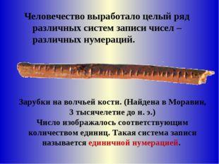 Зарубки на волчьей кости. (Найдена в Моравии, 3тысячелетиедон.э.) Число