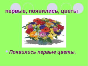 первые, появились, цветы Появились первые цветы.