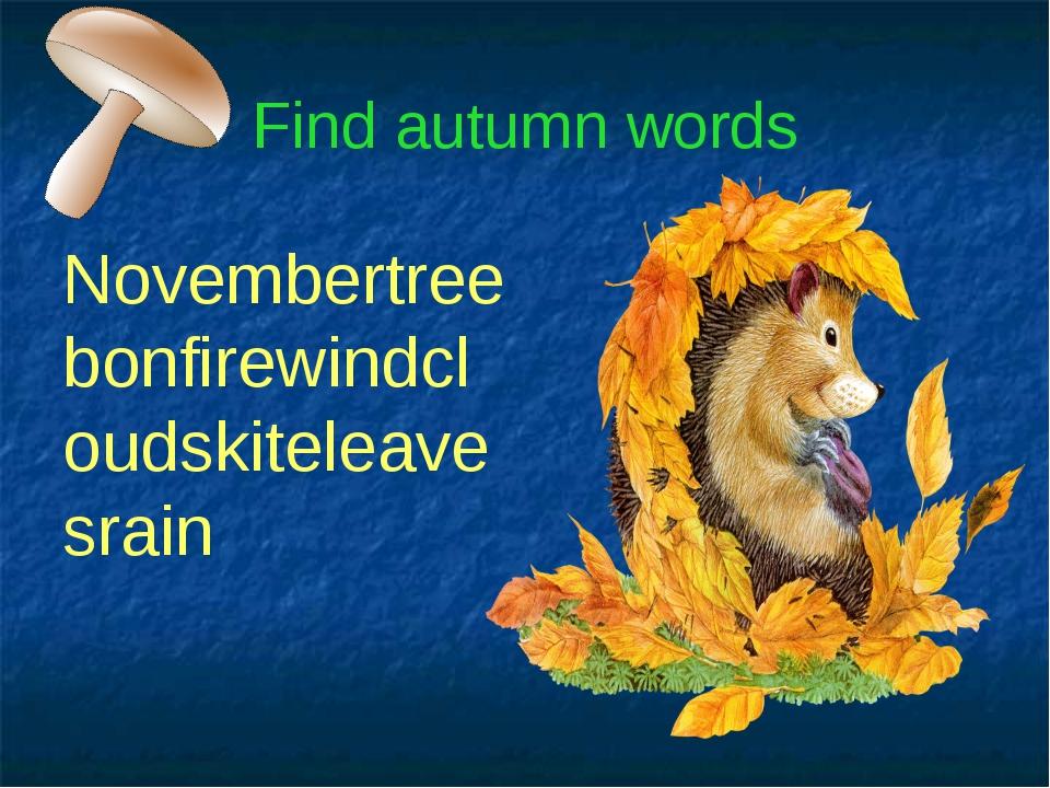 Find autumn words Novembertreebonfirewindcloudskiteleavesrain