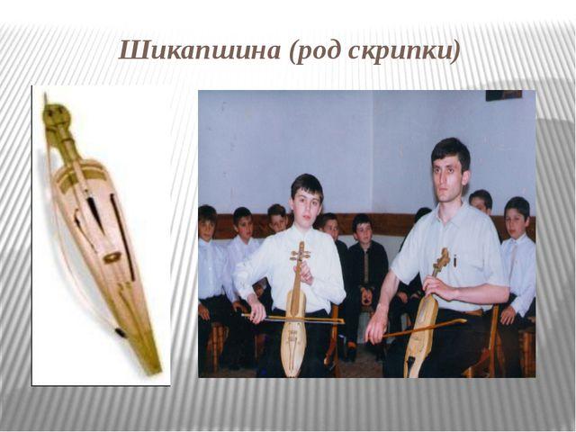 Шикапшина (род скрипки)