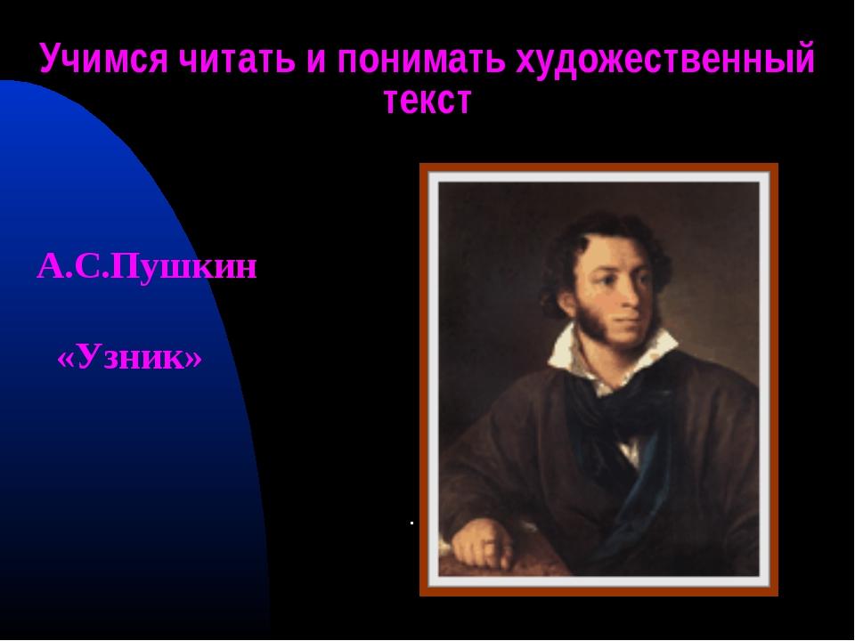 Учимся читать и понимать художественный текст . А.С.Пушкин «Узник»