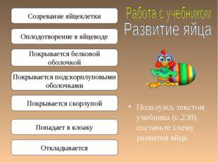 Пользуясь текстом учебника (с.238), составьте схему развития яйца Созревание