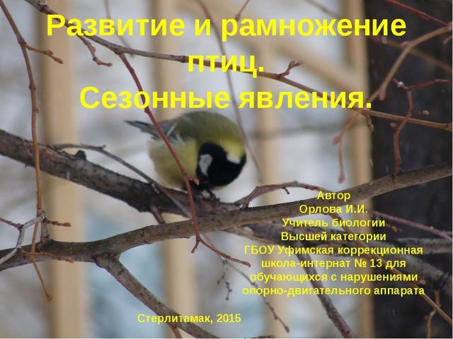 Автор Орлова И.И. Учитель биологии Высшей категории ГБОУ Уфимская коррекционн...