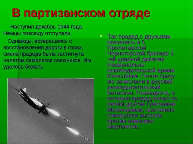 В партизанском отряде Наступил декабрь 1944 года. Немцы повсюду отступали. Од...