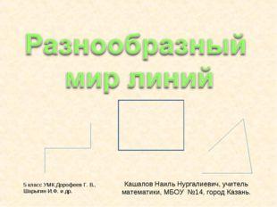 Кашапов Наиль Нургалиевич, учитель математики, МБОУ №14, город Казань. 5 клас