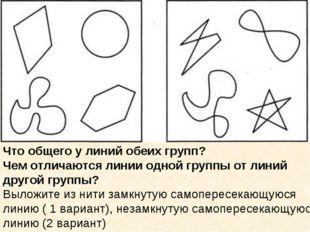 Что общего у линий обеих групп? Чем отличаются линии одной группы от линий др