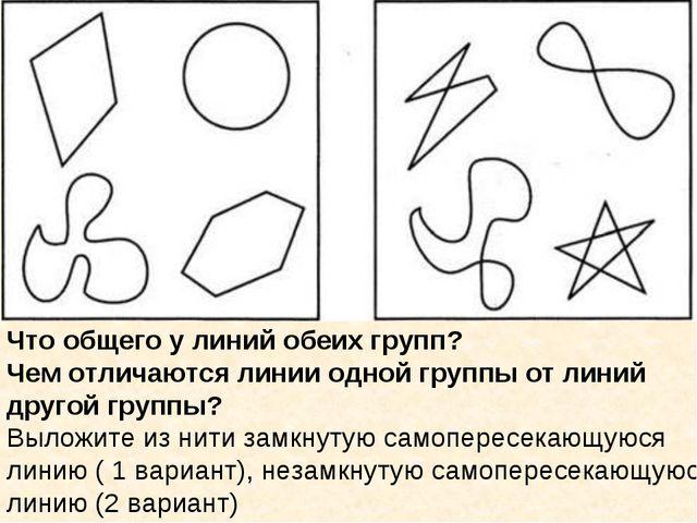 Что общего у линий обеих групп? Чем отличаются линии одной группы от линий др...