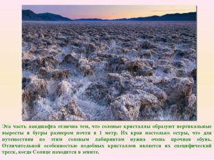 Эта часть ландшафта отлична тем, что солевые кристаллы образуют вертикальные