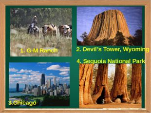 2. Devil's Tower, Wyoming 3.Chicago 1. G-M Ranch 4. Sequoia National Park