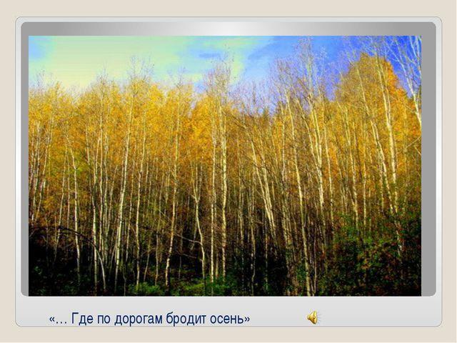 «… Где по дорогам бродит осень»