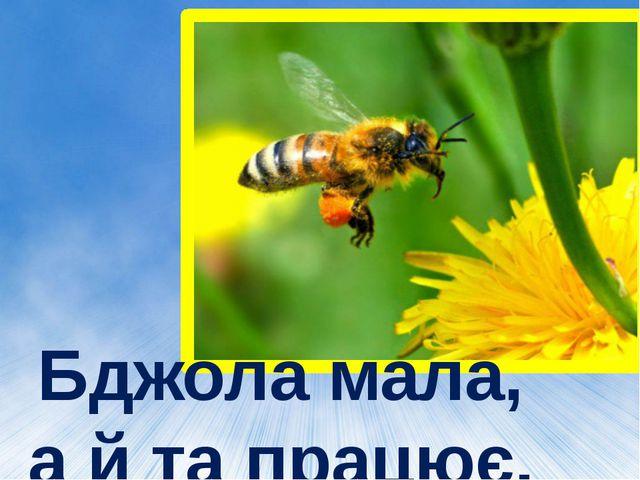 Бджола мала, а й та працює.