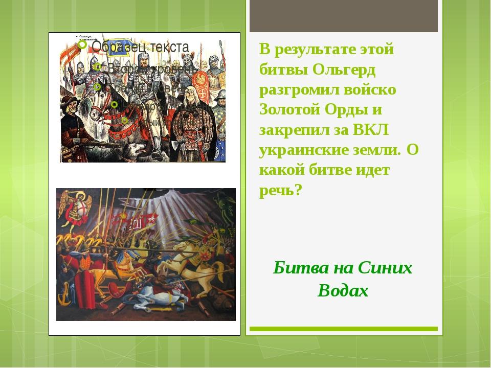 В результате этой битвы Ольгерд разгромил войско Золотой Орды и закрепил за В...