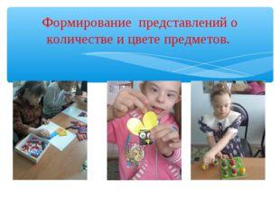 Формирование представлений о количестве и цвете предметов.