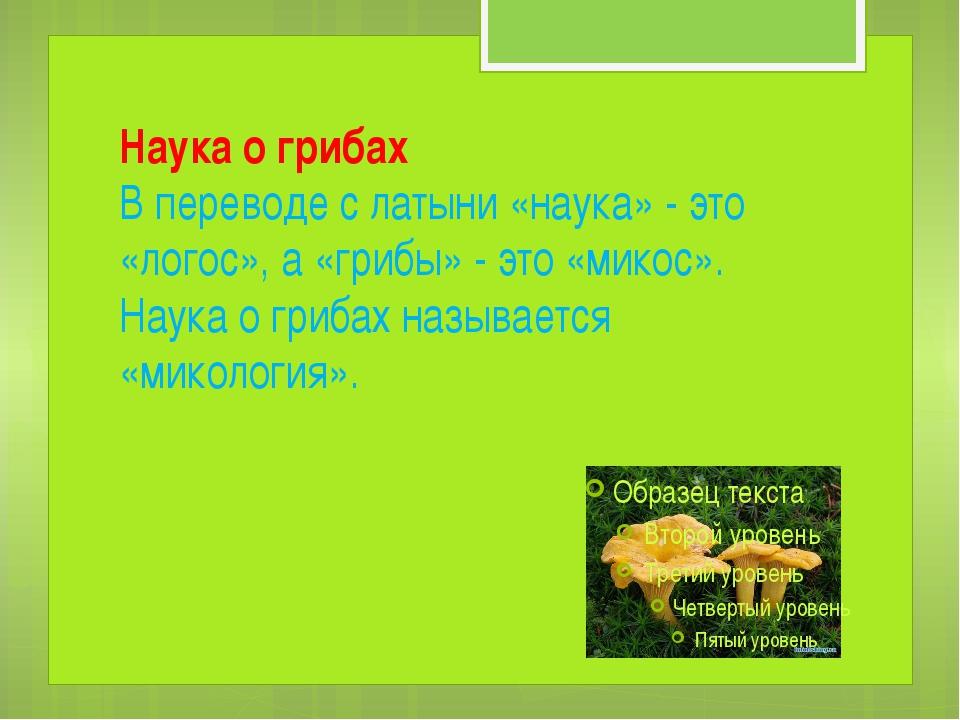 Наука о грибах В переводе с латыни «наука» - это «логос», а «грибы» - это «ми...