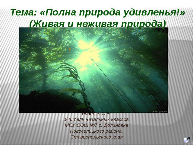 Руденко А.Н. Учитель начальных классов МОУ СОШ №7 с. Долиновка Новоселицкого...