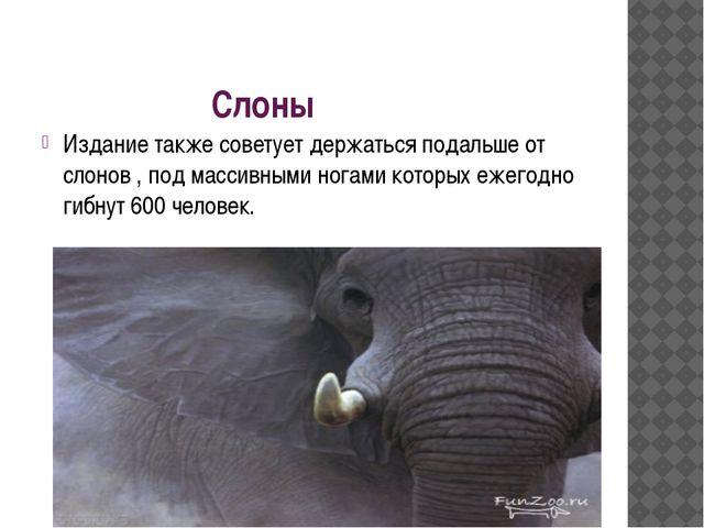 Слоны Издание также советует держаться подальше от слонов , под массивными но...