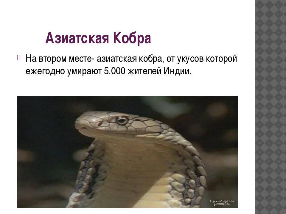 Азиатская Кобра На втором месте- азиатская кобра, от укусов которой ежегодно...