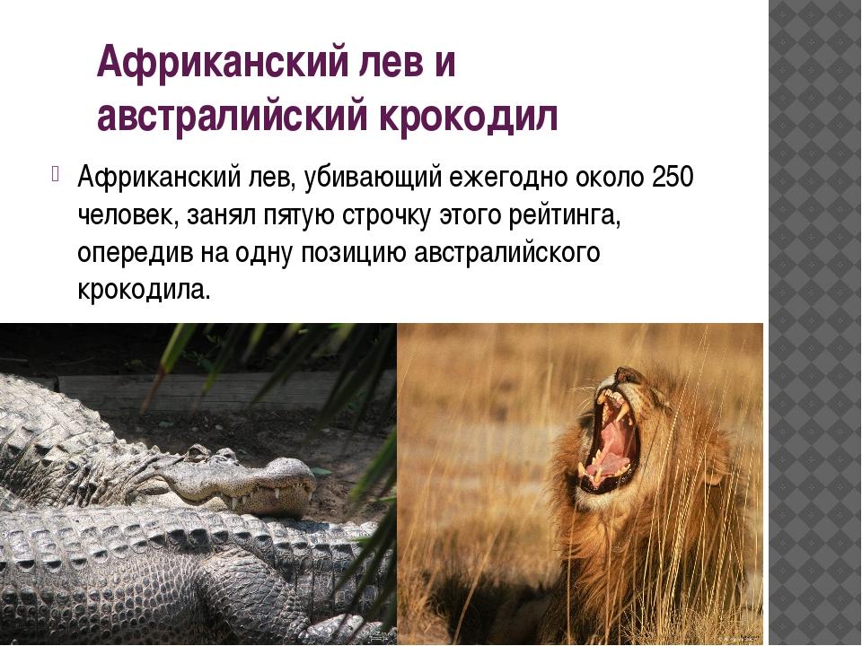 Африканский лев и австралийский крокодил Африканский лев, убивающий ежегодно...