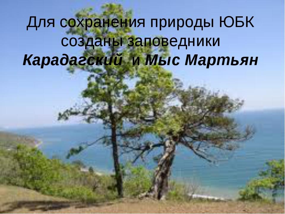 Для сохранения природы ЮБК созданы заповедники Карадагский и Мыс Мартьян