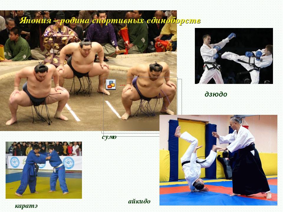 Япония – родина спортивных единоборств дзюдо айкидо каратэ сумо