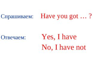 Спрашиваем: Have you got … ? Отвечаем: Yes, I have No, I have not