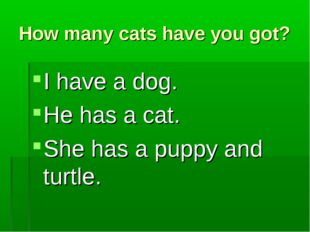 How many cats have you got? I have a dog. He has a cat. She has a puppy and t