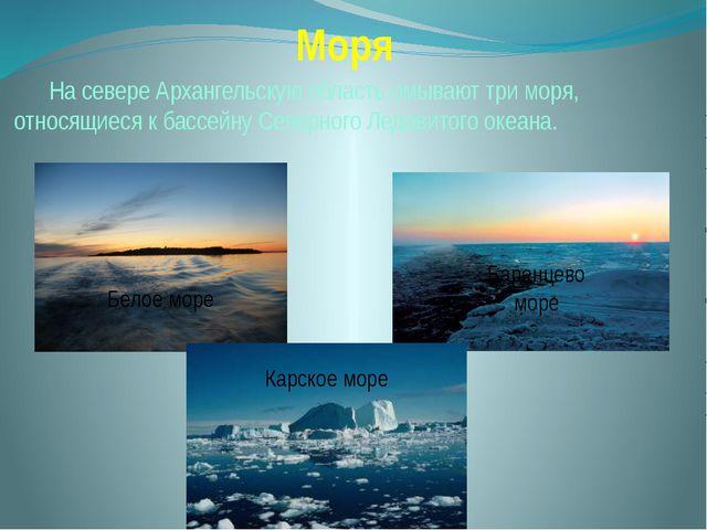 Моря На севере Архангельскую область омывают три моря, относящиеся к бассейн...