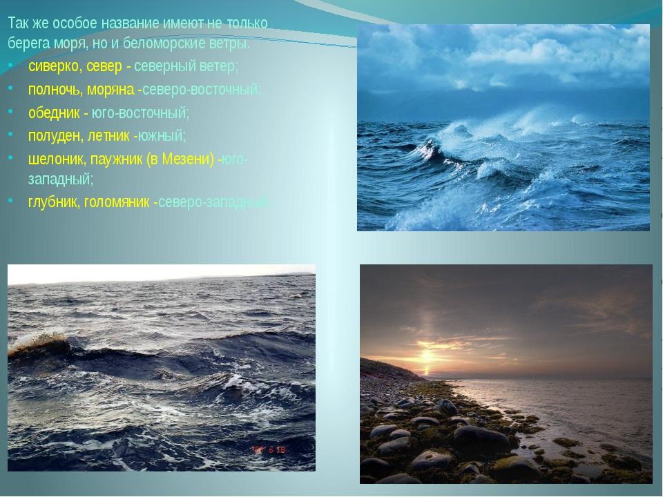 Так же особое название имеют не только берега моря, но и беломорские ветры. с...