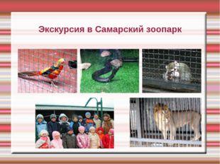 Экскурсия в Самарский зоопарк
