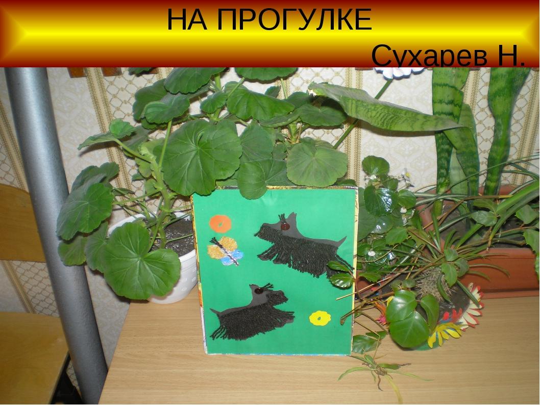 НА ПРОГУЛКЕ Сухарев Н.