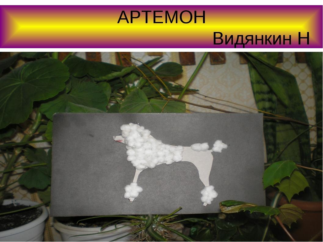 АРТЕМОН Видянкин Н