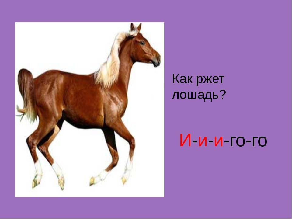 Как ржет лошадь? И-и-и-го-го