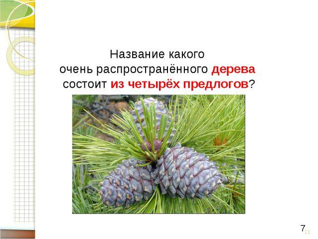 * 7 Название какого очень распространённого дерева состоит из четырёх предлог...