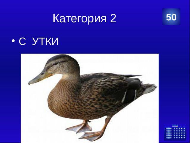 Категория 3 Вопросительное 10 Категория Ваш ответ