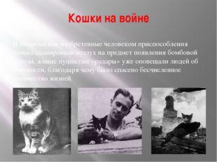 Кошки на войне В то время как изобретенные человеком приспособления только ск