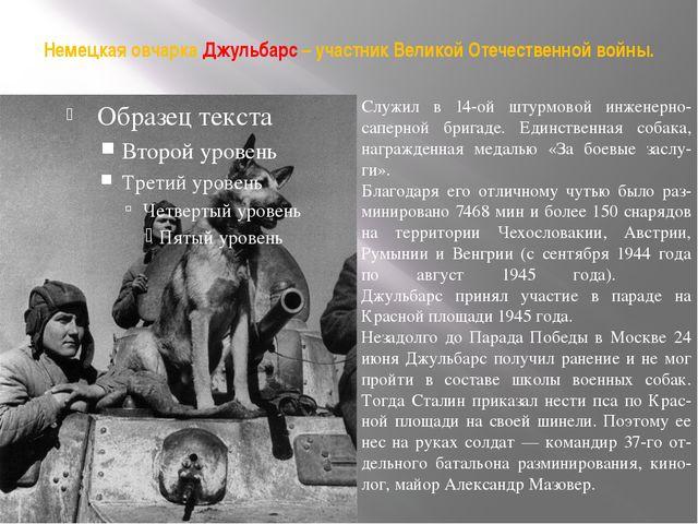 Немецкая овчарка Джульбарс – участник Великой Отечественной войны. Служил в 1...