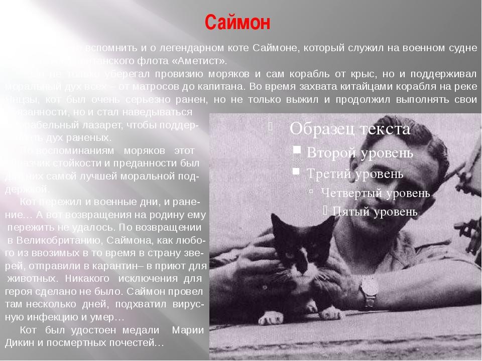 Саймон Необходимо вспомнить и о легендарном коте Саймоне, который служил на в...