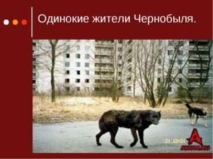 Одинокие жители Чернобыля.