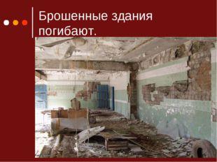 Брошенные здания погибают.