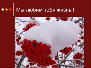 Мы любим тебя жизнь !
