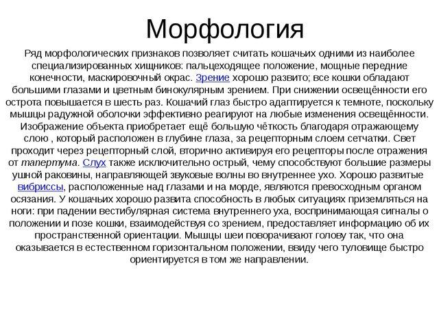Морфология Ряд морфологических признаков позволяет считать кошачьих одними из...