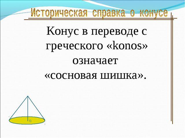 Конус в переводе с греческого «konos» означает «сосновая шишка».