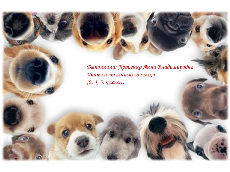 Выполнила: Проценко Анна Владимировна Учитель английского языка (2, 3, 5, кла...