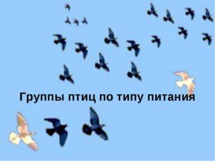 Группы птиц по типу питания