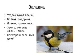 Загадка Угадай какая птица- Бойкая, задорная, Ловкая, проворная. Звонко теньк