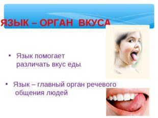 ЯЗЫК – ОРГАН ВКУСА Язык помогает различать вкус еды. Язык – главный орган реч