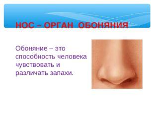 Обоняние – это способность человека чувствовать и различать запахи. НОС – ОРГ