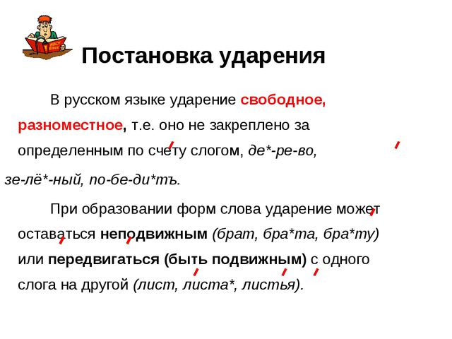 В русском языке ударение свободное, разноместное, т.е. оно не закреплено за...